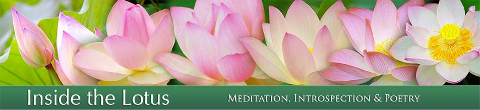 Inside the lotus header