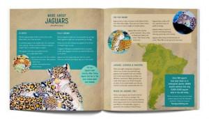 jaguar-inside-mockup3