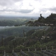 Bali Rains